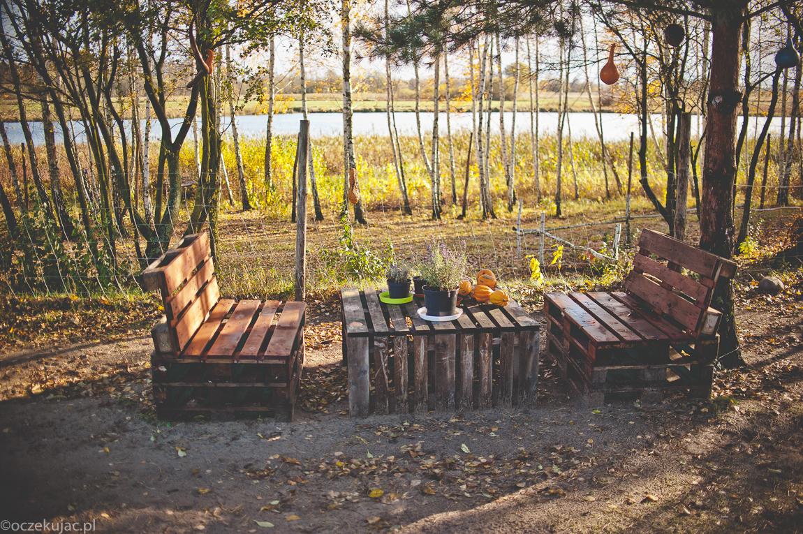 dynioland-halloween-wieliszewo-108