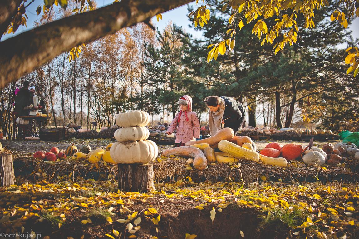 dynioland-halloween-wieliszewo-118