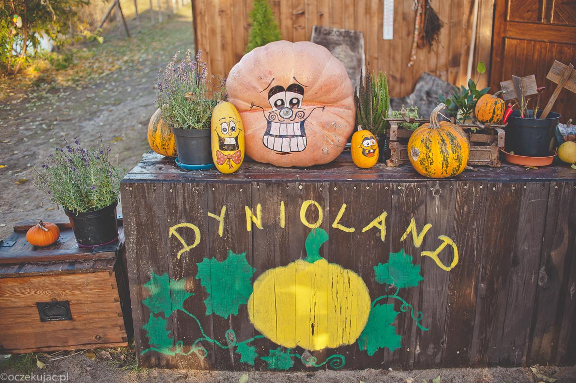 dynioland-halloween-wieliszewo-153
