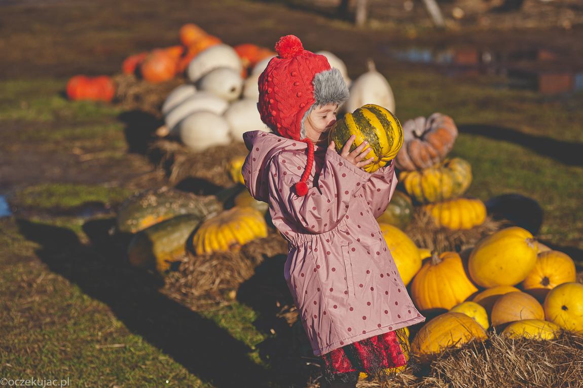 dynioland-halloween-wieliszewo-70